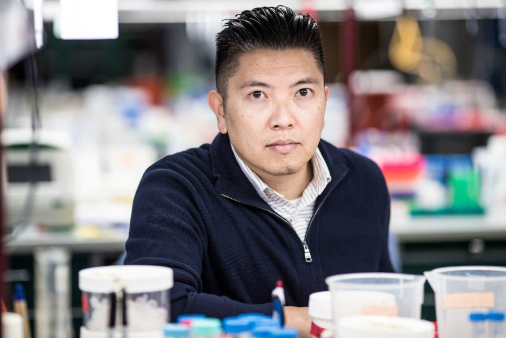 Duc Dong, Ph.D., assistant professor at Sanford Burnham Prebys Medical Discovery Institute