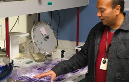 Sumit Chanda, Ph.D., director and professor of Sanford Burnham Prebys' Immunity and Pathogenesis Program and senior author of the bioRxiv study that identifies potential near-term COVID-19 treatments