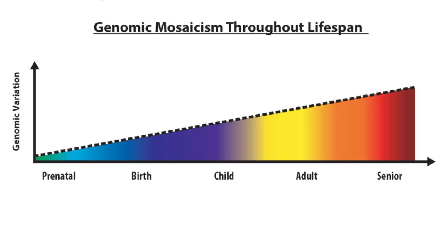 Genomic mosaicism increases over time