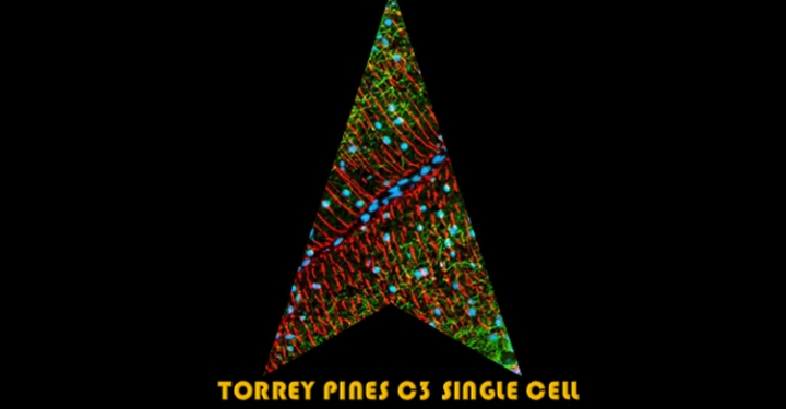 Torrey Pines C3 Single Cell Space Force graphic