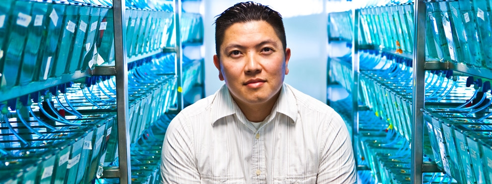 Duc Dong, Ph.D. surrounded by zebra fish tanks