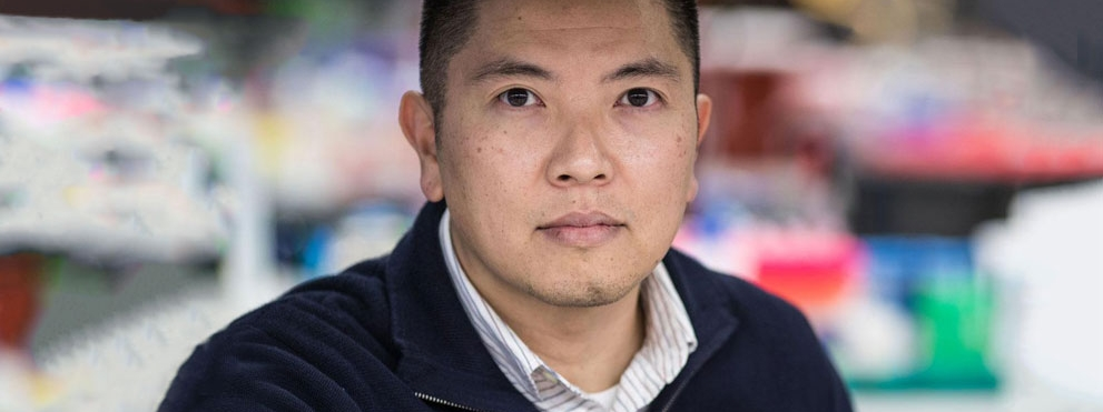 Duc Dong, Ph.D. in lab